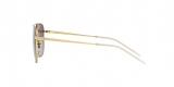 Ray-Ban Sunglass 3588S 90548G 55 عینک آفتابی ریبن مدل 3588 مناسب آقایان با عدسی دودی سایه روشن