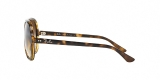 RayBan Sunglass 4125S 071051 59عینک آفتابی مردانه برند ریبن با عدسی های قهوهای دو رنگ