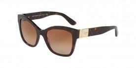 Dolce & Gabbana DG4309 502/13 53