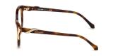 Roberto Cavalli RC5055 052 عینک ربرتو کاوالی